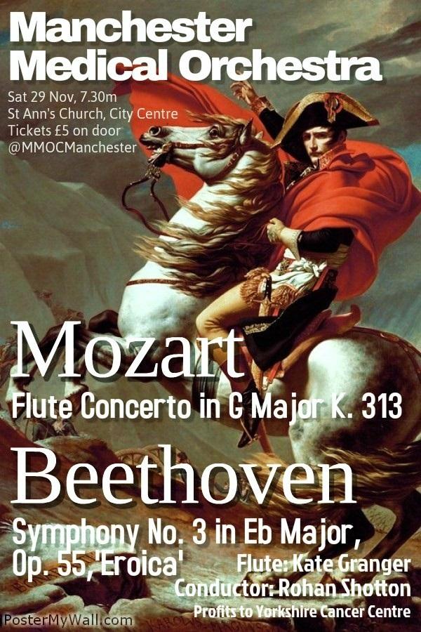 Concert Poster - Copy